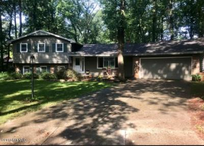 Grand Rapids MI Single Family Home For Sale: $309,000