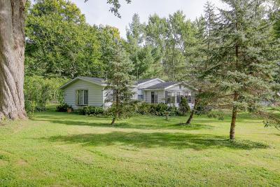 Bangor Single Family Home For Sale: 43203 Maple Avenue