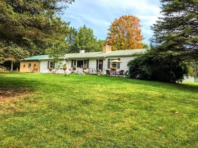 Big Rapids Single Family Home For Sale: 15230 157th Avenue