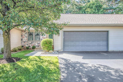 Berrien County, Branch County, Calhoun County, Cass County, Hillsdale County, Jackson County, Kalamazoo County, St. Joseph County, Van Buren County Condo/Townhouse For Sale: 6815 Birdsong Avenue