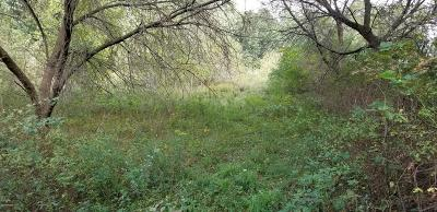 Residential Lots & Land For Sale: 29th Street