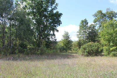 Montcalm County Residential Lots & Land For Sale: M-82