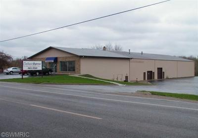 Berrien County Commercial For Sale: 7139 Red Arrow Highway