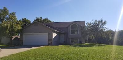 Middleville Single Family Home For Sale: 2420 Stanton Drive