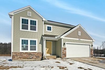 Hudsonville Single Family Home For Sale: 4310 Springhill Drive