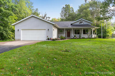 Coopersville Single Family Home For Sale: 8731 Leonard Street