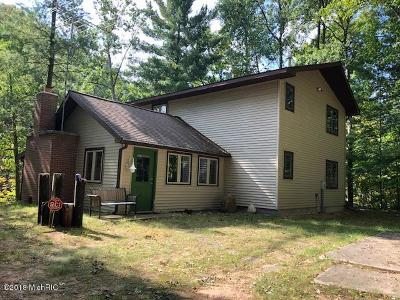 Benzie County, Charlevoix County, Clare County, Emmet County, Grand Traverse County, Kalkaska County, Lake County, Leelanau County, Manistee County, Mason County, Missaukee County, Osceola County, Roscommon County, Wexford County Single Family Home For Sale: 8081 Johnson