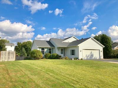 Hudsonville Single Family Home For Sale: 6296 Plainview Drive