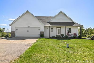 Hudsonville Single Family Home For Sale: 5470 New Holland Street