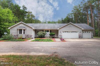 Cedar Springs Single Family Home For Sale: 12480 Heintzelman Avenue NE