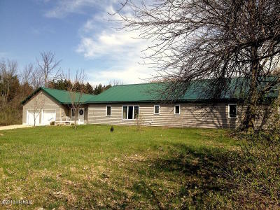 Scottville Single Family Home For Sale: 672 Running Buck Road