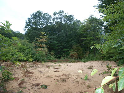 Holland, West Olive Residential Lots & Land For Sale: 11467 156th Avenue
