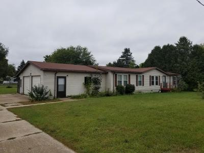 Big Rapids Single Family Home For Sale: 20889 Ross Parkway