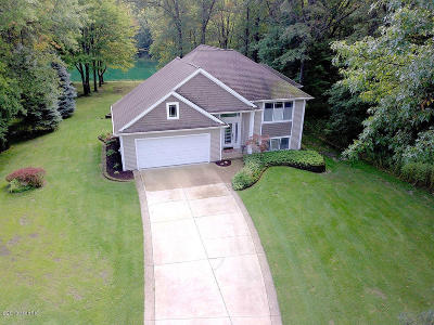 Holland, West Olive, Zeeland Single Family Home For Sale: 13706 Hidden Acres Drive