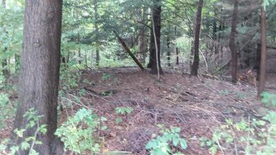 Oceana County Residential Lots & Land For Sale: Lot 28 Sable Point Drive