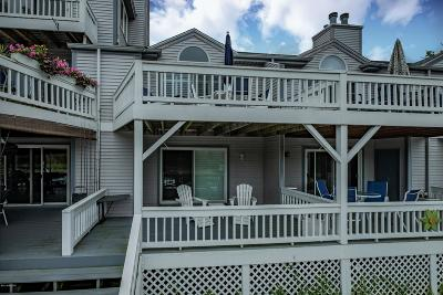 Saugatuck, Douglas Condo/Townhouse For Sale: 366 Mariners Cove Court