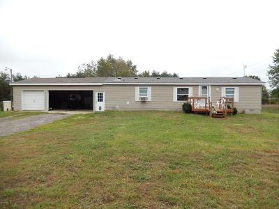 Ravenna Single Family Home For Sale: 380 S Bossett Road