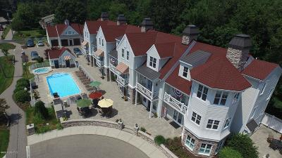 Holland, West Olive Condo/Townhouse For Sale: 2049 Lake Street #2C-Odd/E