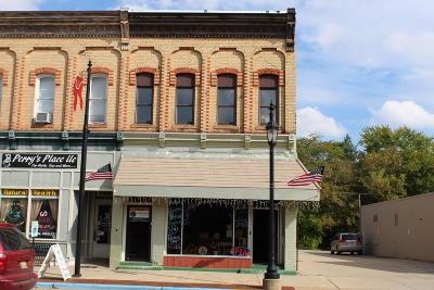 Cedar Springs Commercial For Sale: 88 N Main St Street NE