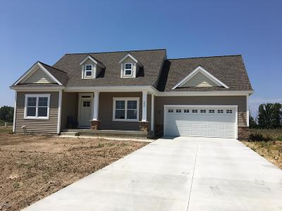 Coopersville Single Family Home For Sale: 233 Plum Lane