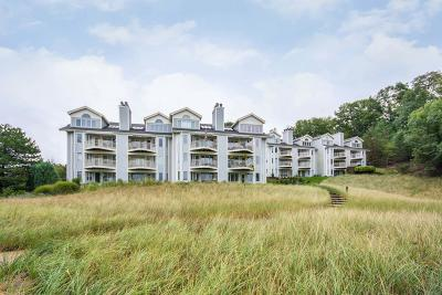 Grand Haven, Spring Lake Condo/Townhouse For Sale: 810 S Harbor Drive #21