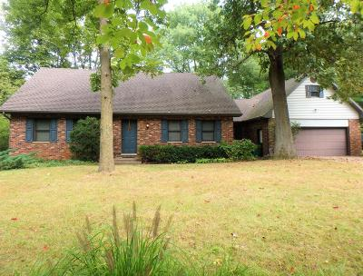 Cass County Single Family Home For Sale: 29828 Runkle Street
