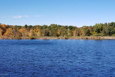 Canadian Lakes MI Residential Lots & Land For Sale: $42,500