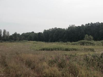Kalamazoo Residential Lots & Land For Sale: M 43 #CB