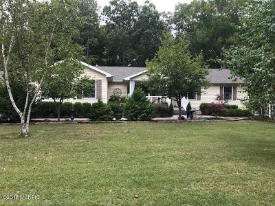Ludington Single Family Home For Sale: 6444 W Dewey Road