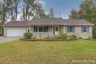Greenville Single Family Home For Sale: 6582 White Pine Drive