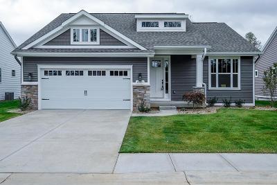 Portage Condo/Townhouse For Sale: 10591 Gracie Lane