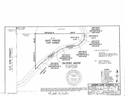 Caledonia Residential Lots & Land For Sale: 375 Raynes Drive
