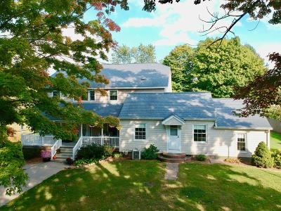 South Haven Single Family Home For Sale: 605 Bailey Avenue