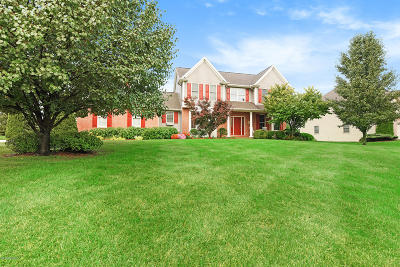 Galesburg Single Family Home For Sale: 3449 Wyngate Meadow