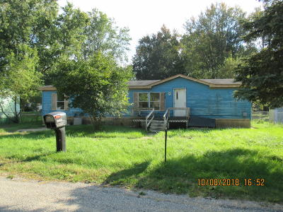 Coldwater Single Family Home For Sale: 437 Sprung Lake Drive