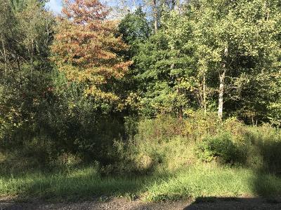 Hudsonville Residential Lots & Land For Sale: 8155 B 66th Street
