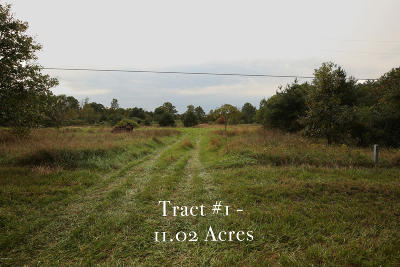 Van Buren County Residential Lots & Land For Sale: Tract1, 22nd Street
