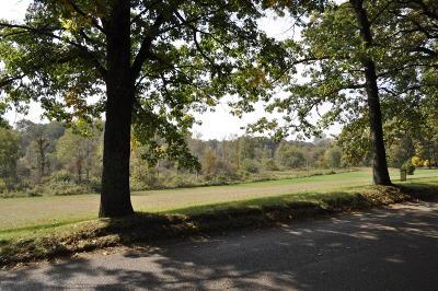Belding Residential Lots & Land For Sale: Par 3 N State Road