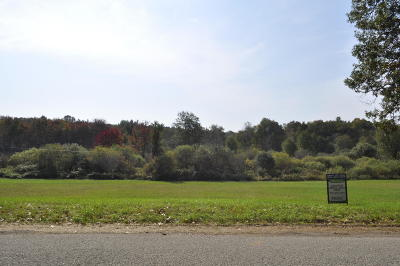 Belding Residential Lots & Land For Sale: Par 4 N State Road