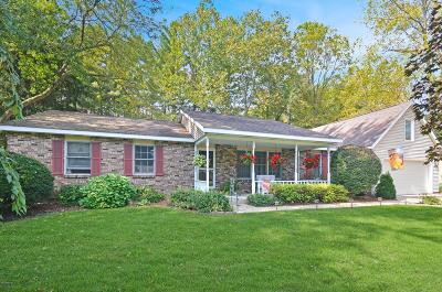 Plainwell Single Family Home For Sale: 710 W Gun River Drive