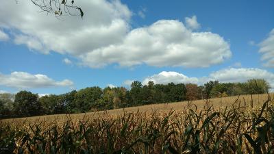 Belding Residential Lots & Land For Sale: 11751 7 Mile Road NE