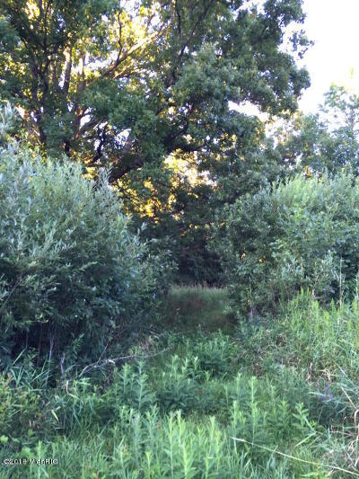 Berrien County, Branch County, Calhoun County, Cass County, Hillsdale County, Jackson County, Kalamazoo County, Van Buren County, St. Joseph County Residential Lots & Land For Sale: 42870 48th Avenue