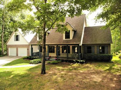 Holland, West Olive, Zeeland Single Family Home For Sale: 698 144th Avenue