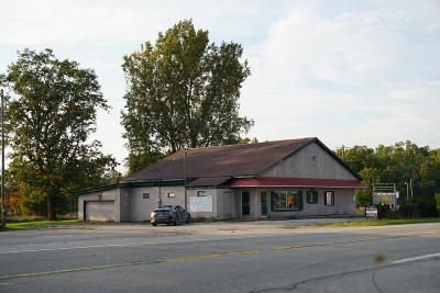 White Cloud Commercial For Sale: 7279 N Woodbridge Road