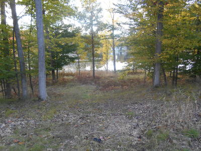 Newaygo County Residential Lots & Land For Sale: W Pickerel Pointe #7