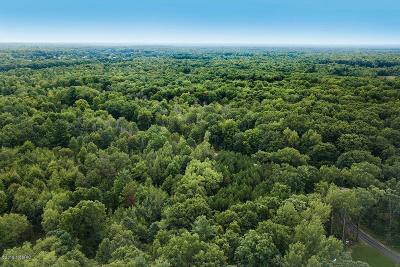 Mecosta County Residential Lots & Land For Sale: 22470 3 Mile Parcel D Road