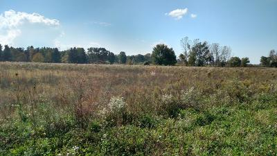 Ottawa County Residential Lots & Land For Sale: 6601 72nd Avenue #Parcel '