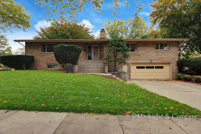 Grand Rapids Single Family Home For Sale: 1735 Sibley Street NW