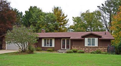 Ludington Single Family Home For Sale: 5876 W Pleasant Ridge Drive