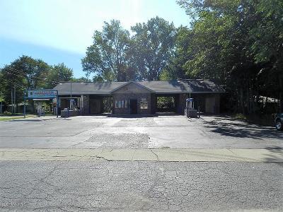 Berrien County Commercial For Sale: 346 S Whittaker Street